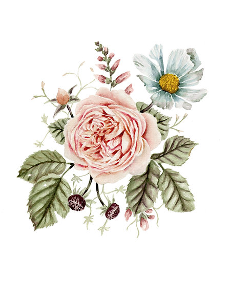 Rose and Foxglove — Watercolor Painting Print