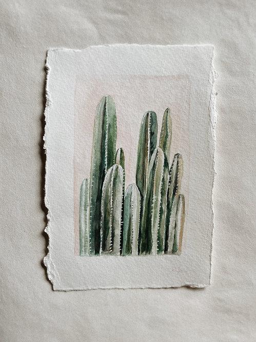 """""""Cacti Family"""" — 5.5 x 8 inches, Original"""