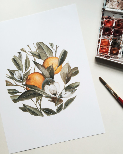 orange blossom watercolor painting print