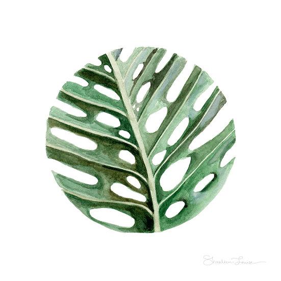 Circular Monstera Leaf Watercolor Painting — Print