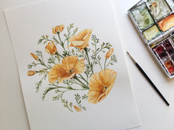 California Poppy Commission