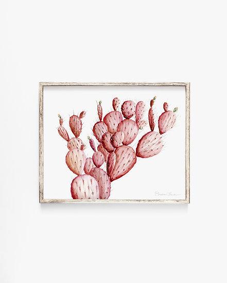Pink Cacti Watercolor Painting — Print