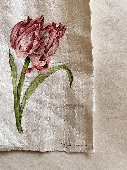 """""""Fading Tulip"""" — 5.5 x 7.5 inches, Original"""