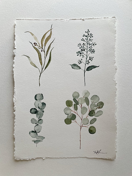 """""""Eucalyptus Branches — 8 x 11.5, Original Watercolor"""