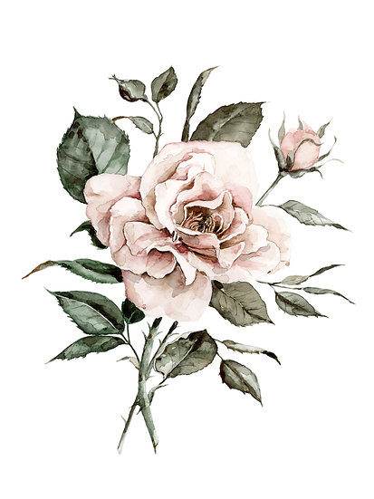 Faded Rose Watercolor Painting — Print