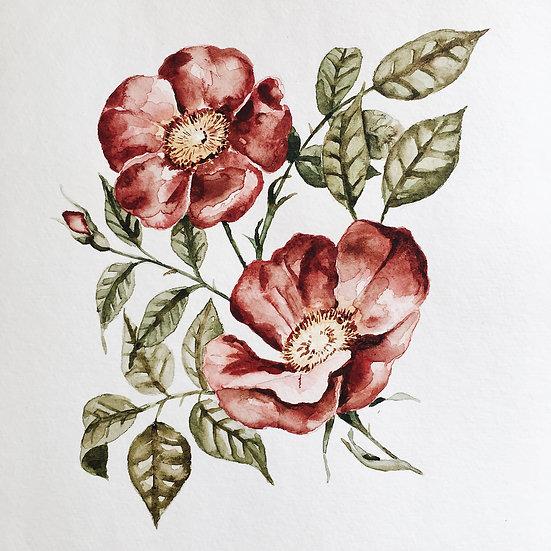 Red Wildflower Painting Original Artwork — 9x12