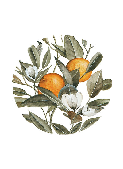 Circular Orange Blossom Watercolor Painting — Print