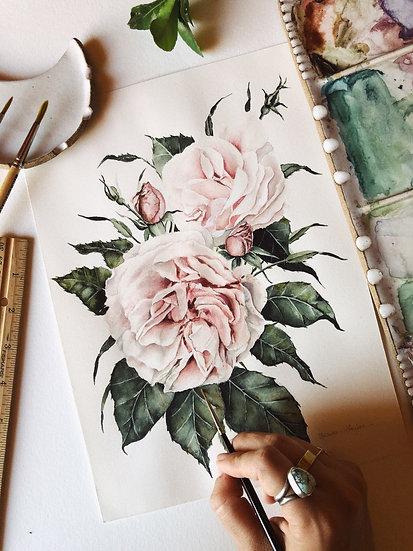 Pink Garden Roses Original Watercolor Painting — 8.5x10