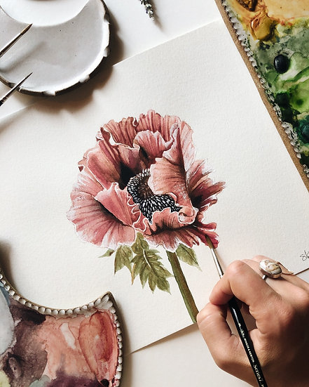 Pink Poppy Original Watercolor Painting — 9x12