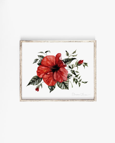 Red Hibiscus Watercolor Painting — Print