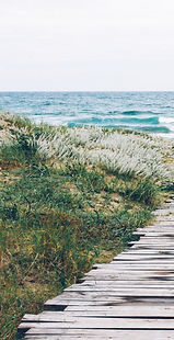 Wooden%2520path%2520to%2520the%2520beach_edited_edited.jpg