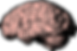 brain-think-knowledge-free-vector-graphi