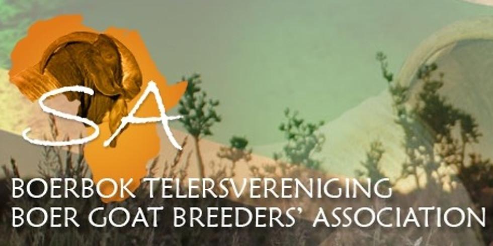 CDP Auctioneering - Kalahari Red Skou en Veiling
