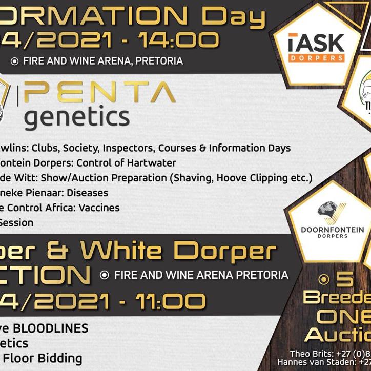 Penta Genetics Auction
