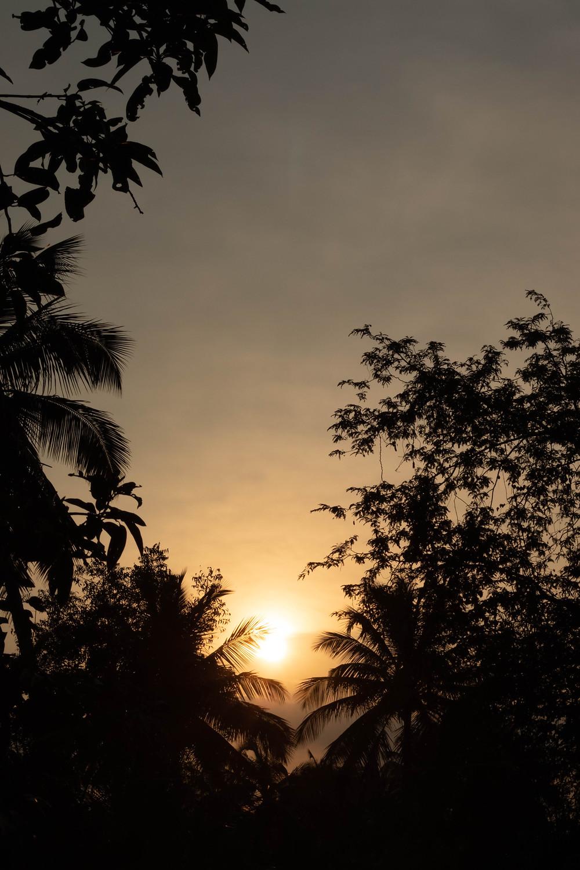 Sunset at Kodunthirapully, Palakkad