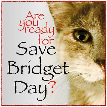 Save Bridget Day 1 JPG.jpg