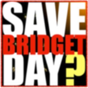 Save Bridget Day 6 JPG.jpg