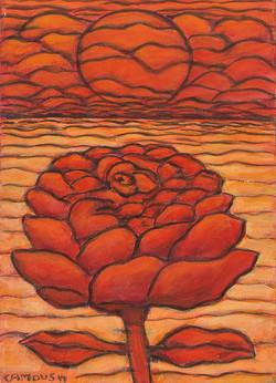 THE SUNSET ROSE