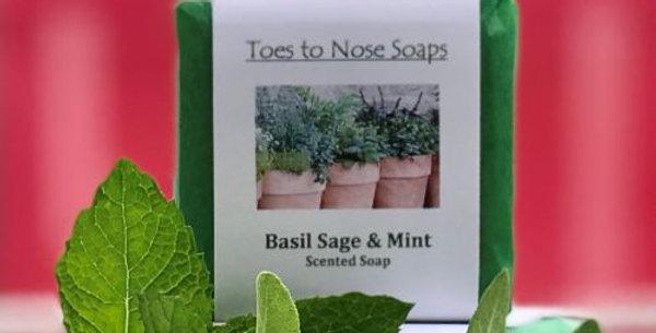Basil, Sage & Mint