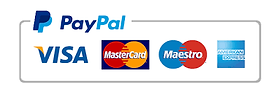PayPal e commerce.png