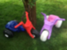 pink and blue tricycles on the grass in the Queentown Gardens NZ