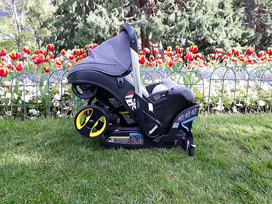 Doona infant car seat and stroller in the Queenstown Gardens in Spring New Zealand