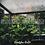 Thumbnail: Rain Ambience Sound Pack