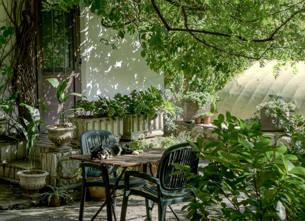 Your Balcony Could be Your Own Private Oasis