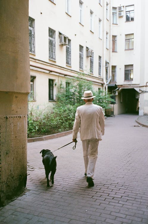 A man with a tan suit is walking his black dog on a brick pathway near apartments.