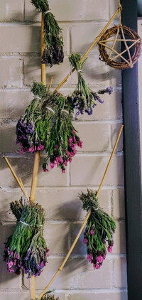 Drying Lavender For Personalised Talismans