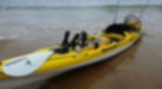 SoT-FishPro.jpg