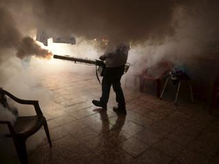 Virus Zika: 22 pays à éviter, avertit la Santé publique étatsunienne