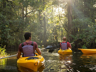New Disney World, Florida Itinerary From Adventures by Disney