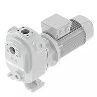 This is a picture of the knoll block pump BS 40