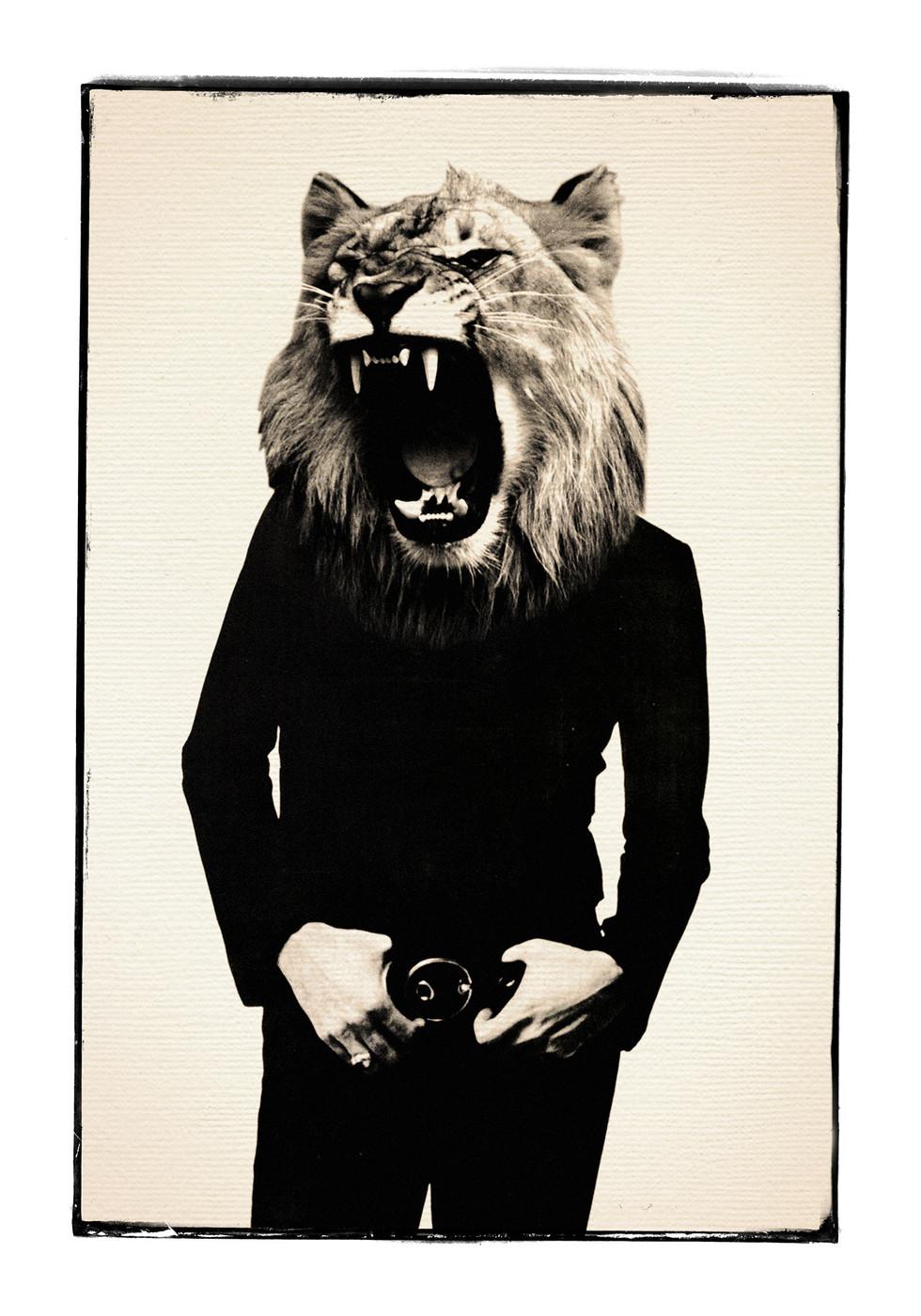 lionroarweb.jpg