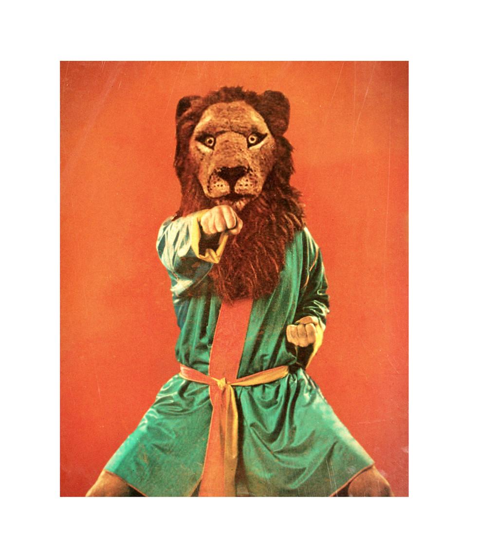 lionpunch1620web.jpg