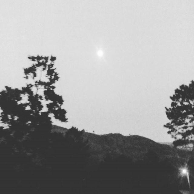 #geres #wildlife #cabrilecorural #lifecanbesimple