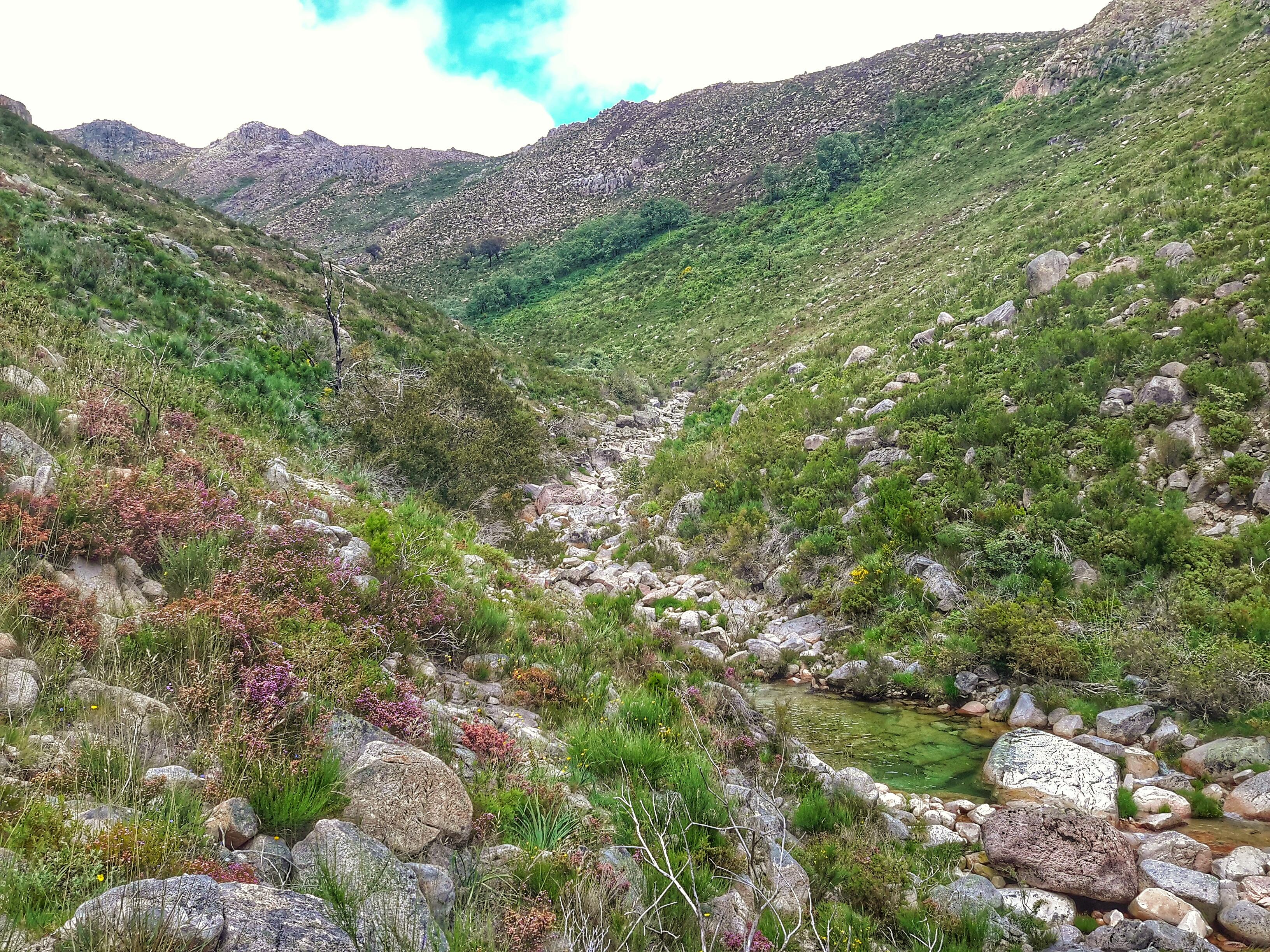 ecotourism, nature, Montalegre,Gerês
