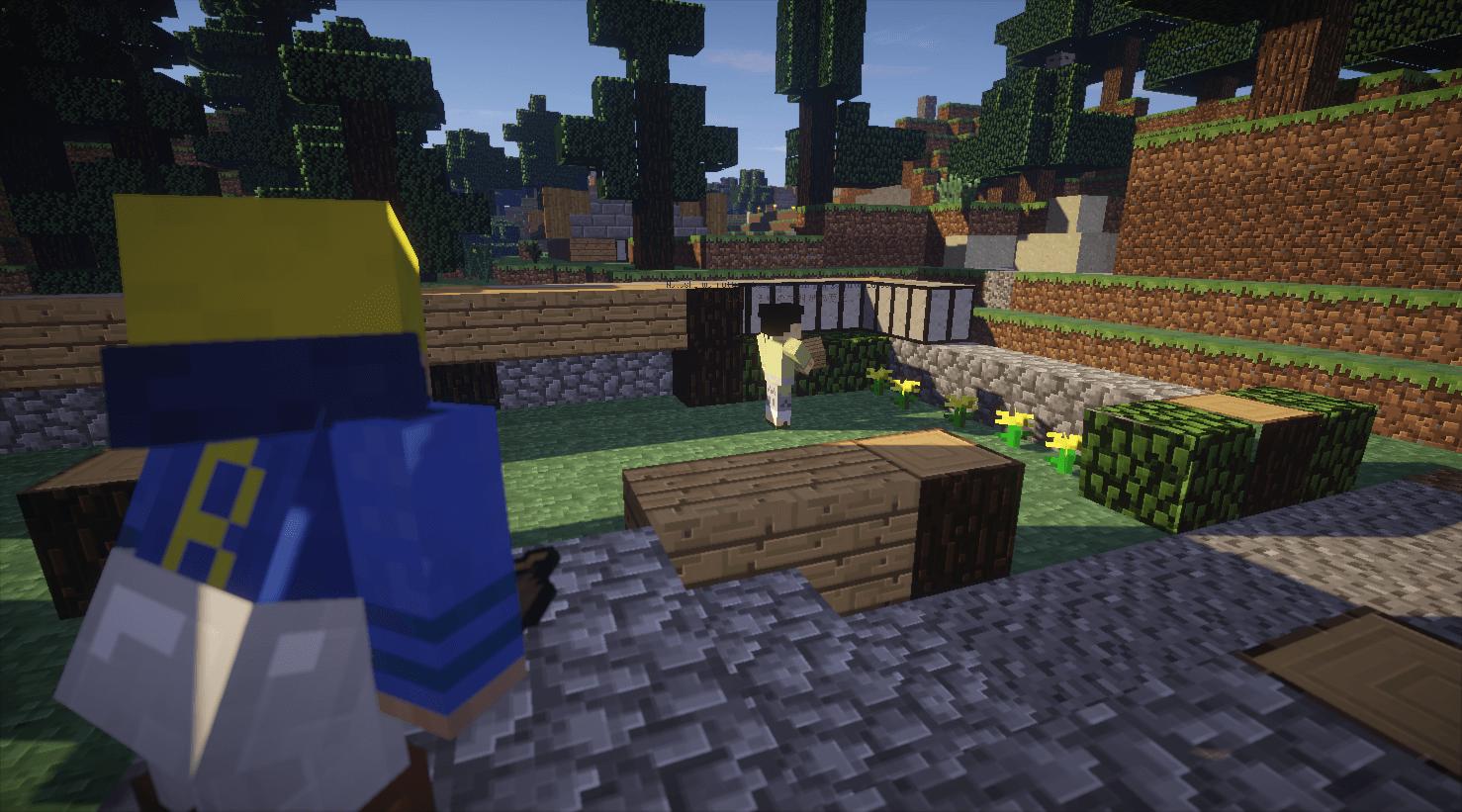 村人に家を作ってもらってる