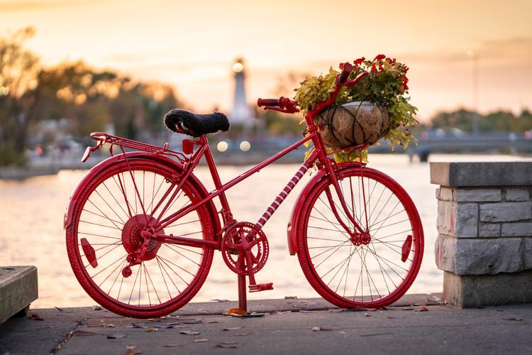 Port Credit red bike