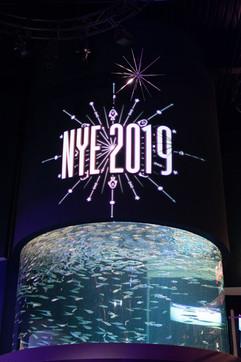 2018 Ripleys Aquarium of Canada New Year's Eve