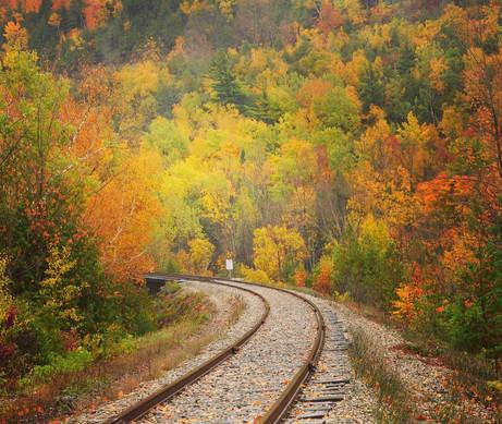 Fall colours on railway track, Belfountain
