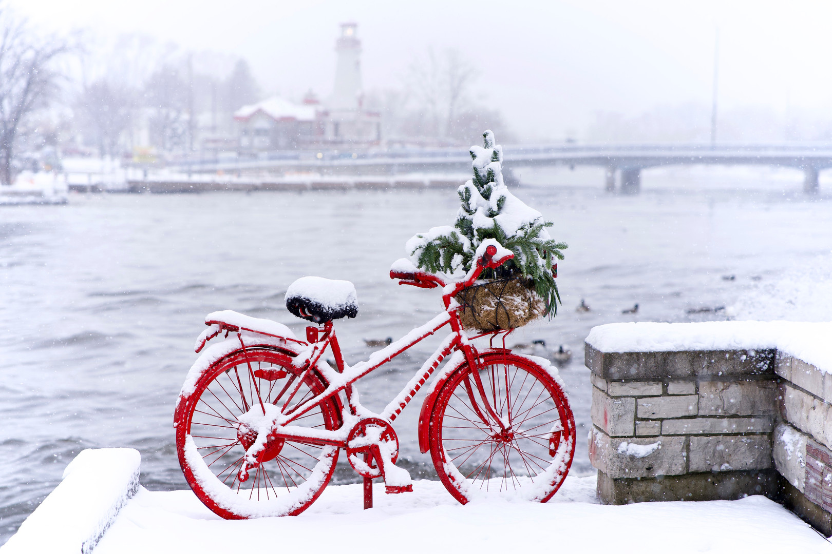 Port Credit red bike in winter