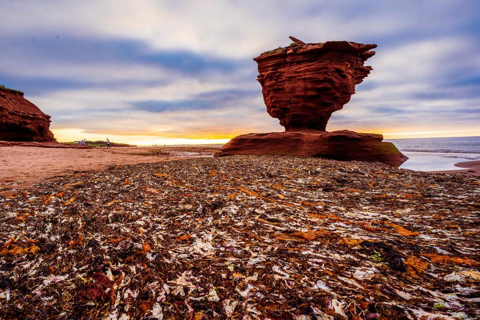 PEI North Shore Low Tide