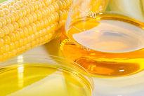 high fructose corn syrup.jpg