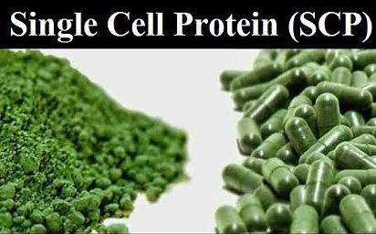 Inulinase enzyme.jpg