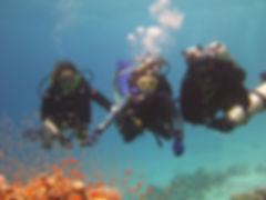 open_water_diving.jpg