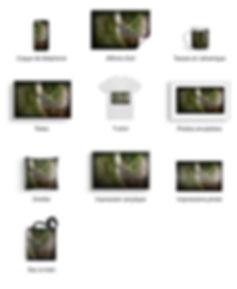 SharedScreenshot-aniamlier.jpg