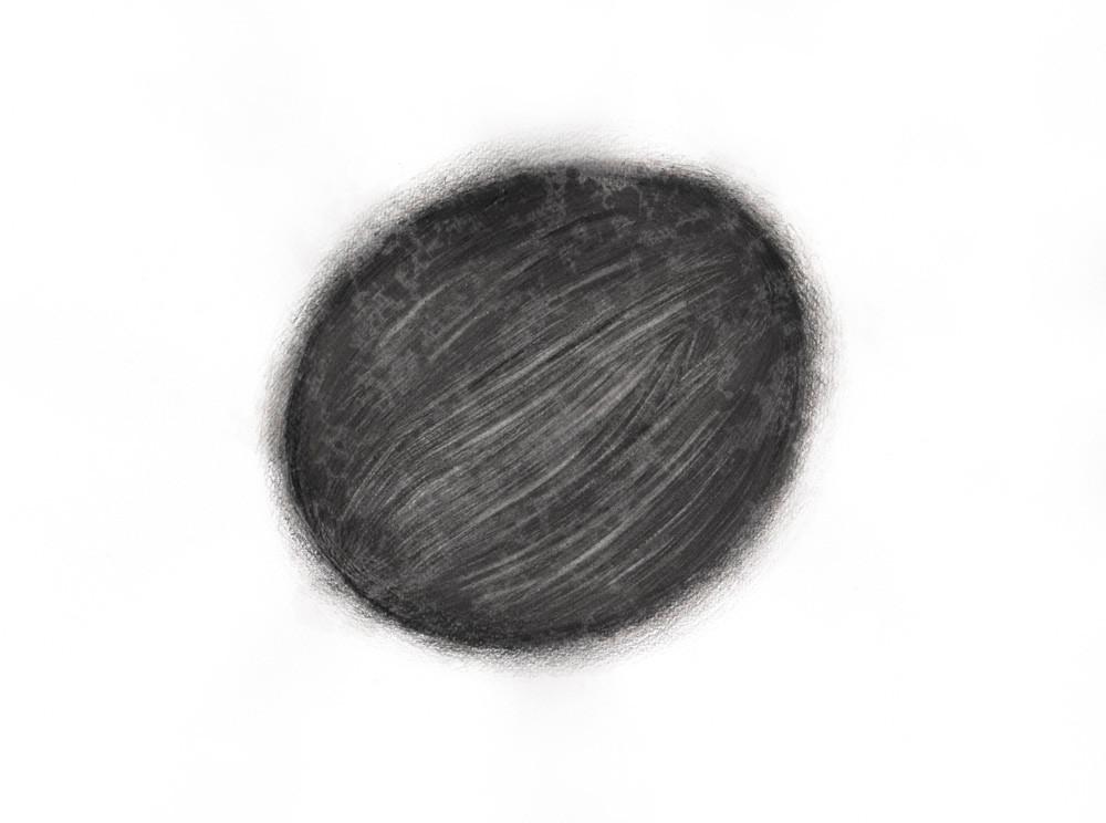 #NeutralMatter #LifeMatter #Seed Pencil on paper 400 x 300mm