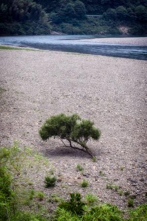 Shimanto River, Kochi Japan